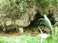 Guimaras resort Alobijod Cove 31